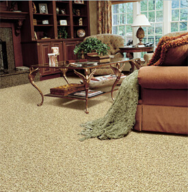 Anso Nylon with R2X carpet
