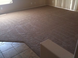 New Carpet For Our Entire House
